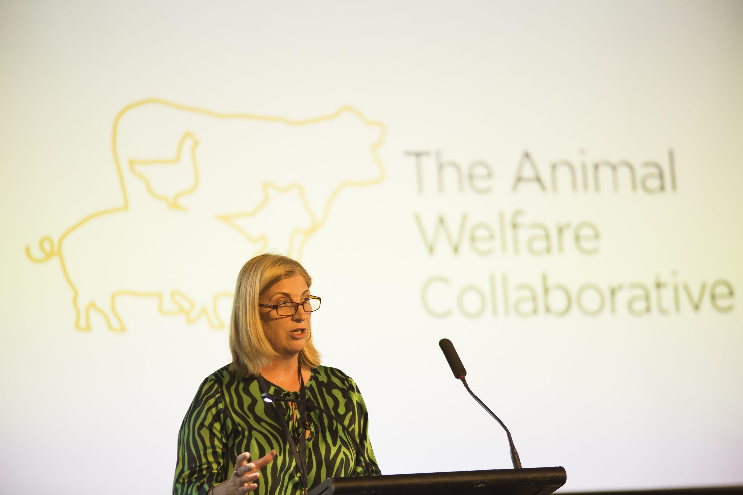 UQ DVCR Bronwyn Harch launches The Animal Welfare Collaborative
